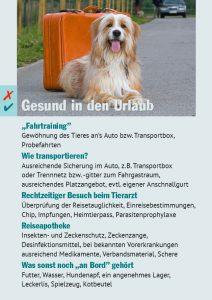 Hundeurlaub Checkliste